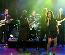 Live Music with Showtime Dance Band